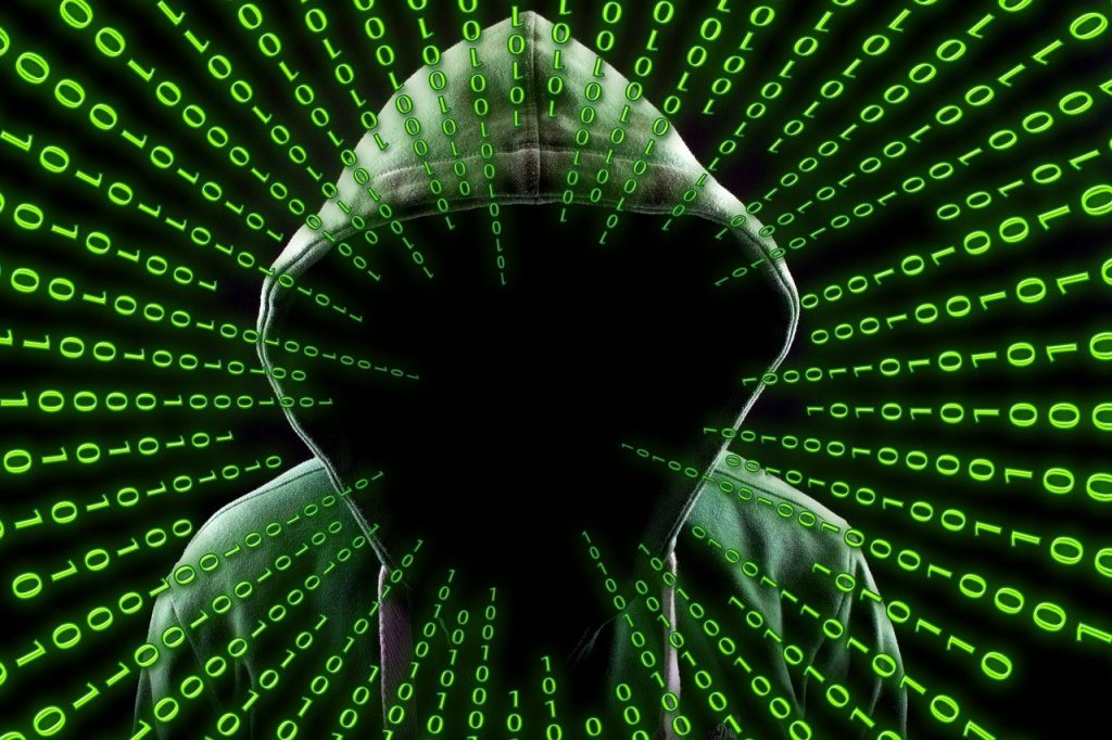Un pirate du web