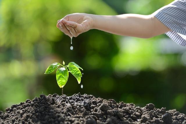 Les gestes écologiques à connaitre